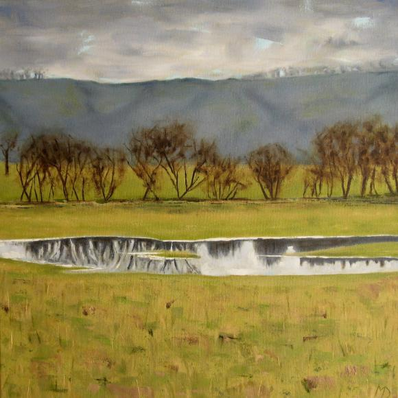 Amber Valley with flooded meadow by Martin Davis